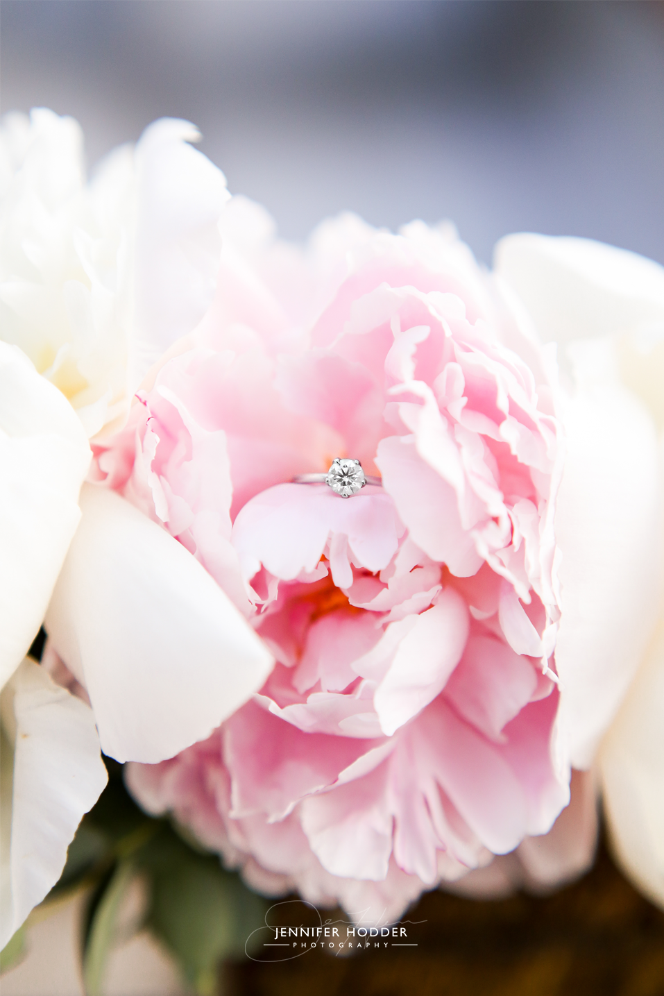 solitaire engagement ring on a peony