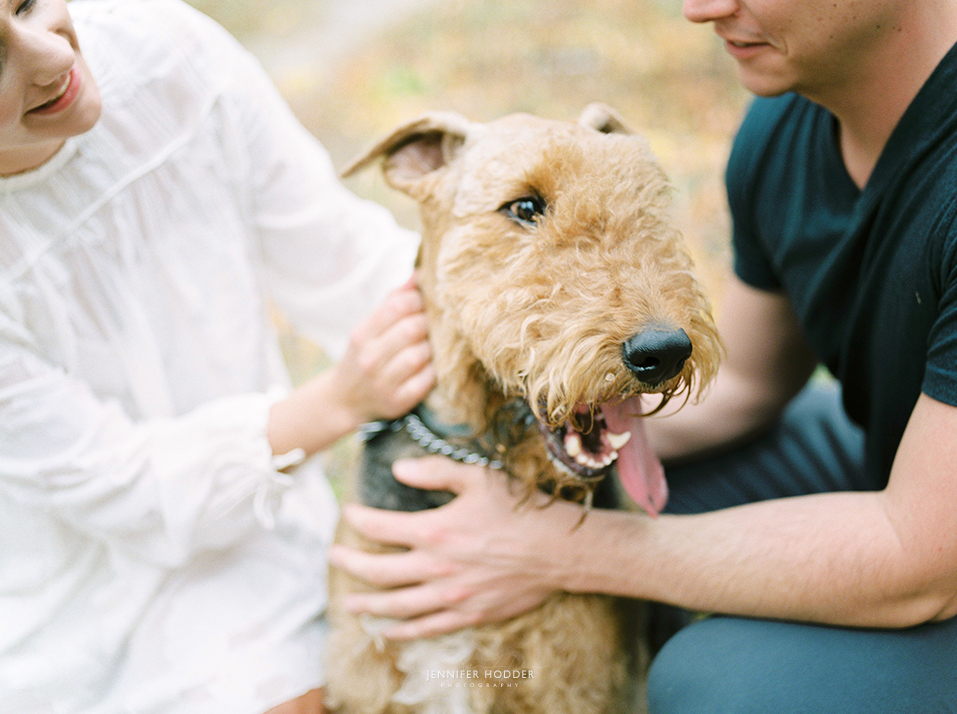 Fine art film photography dog at an engagement shoot