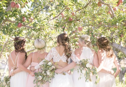 Evolve Cellars orchard wedding