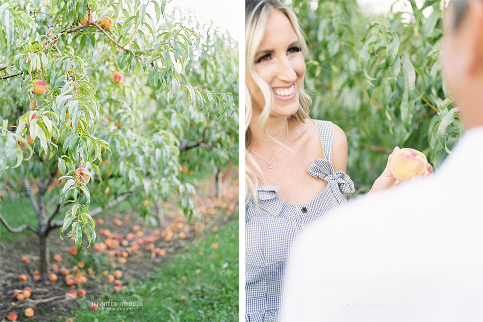 kelowna peach orchard engagement photography