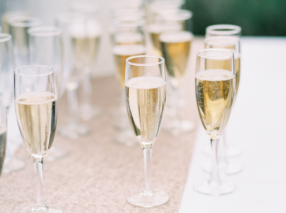 champaign sparkeling wine toasts