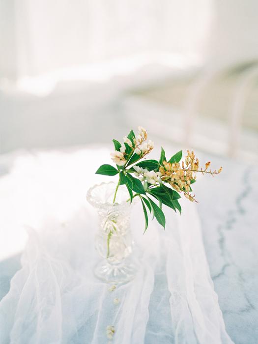 celsia floral Vancouver fine art film photographer